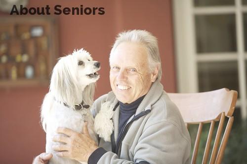 About Seniors