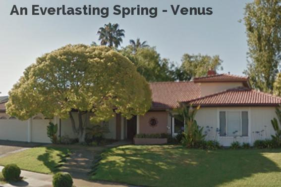 An Everlasting Spring - Venus