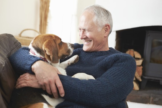Are Pets a Danger to Nursing Homes?