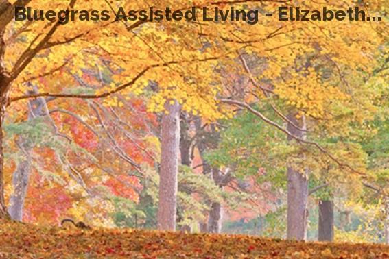 Bluegrass Assisted Living - Elizabeth...