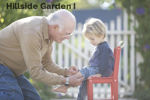 Hillside Garden I