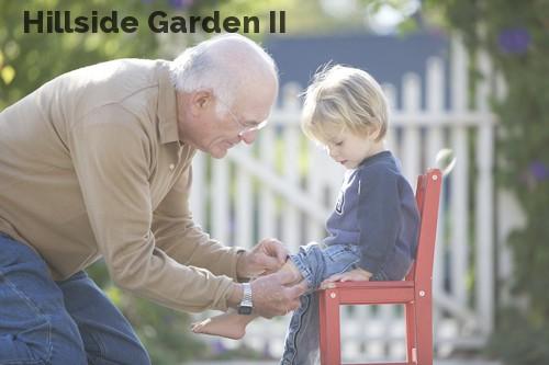 Hillside Garden II