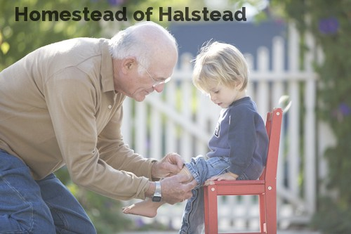 Homestead of Halstead