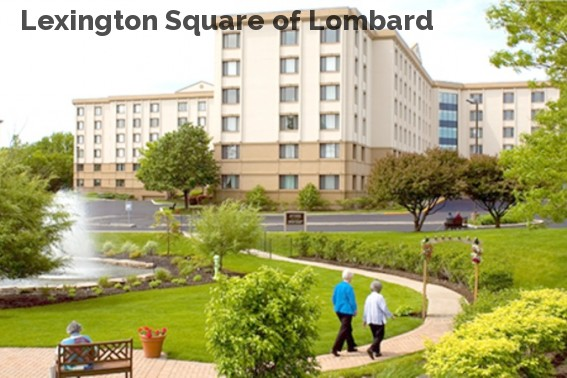 Lexington Square of Lombard