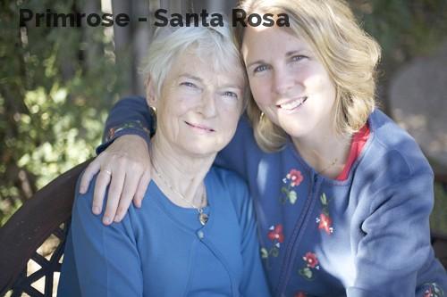Primrose - Santa Rosa