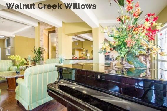 Walnut Creek Willows