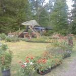 Jims Plant Nursery