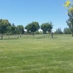 Mountain Crest Park