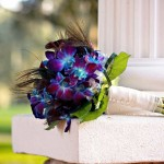 Tampa Wedding & Event Planners