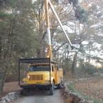 Williams Tree Service