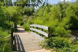 Atria Tanglewood
