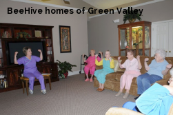 BeeHive homes of Green Valley