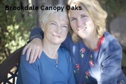 Brookdale Canopy Oaks