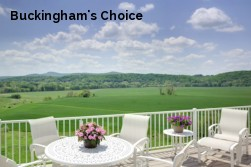 Buckingham's Choice
