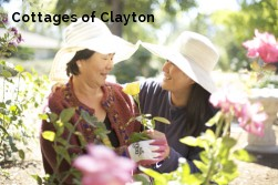 Cottages of Clayton