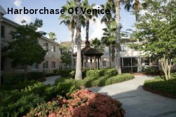 Harborchase Of Venice