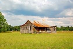 Southern Magnolia Estates II