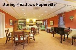 Spring Meadows Naperville