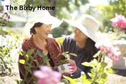 The Bixby Home