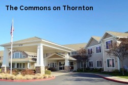 The Commons on Thornton