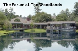 The Forum at The Woodlands
